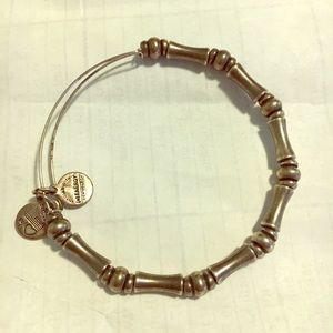 Alex and ani silver bead bracelet
